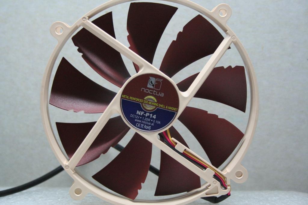 14 fan rear