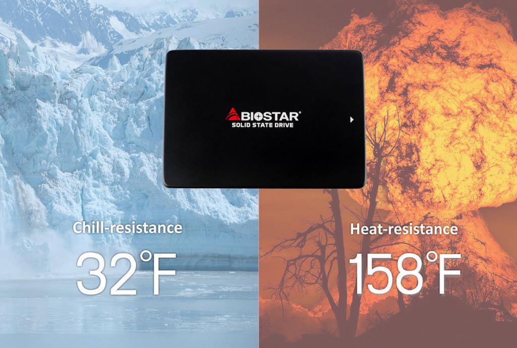 Biostar S100 02
