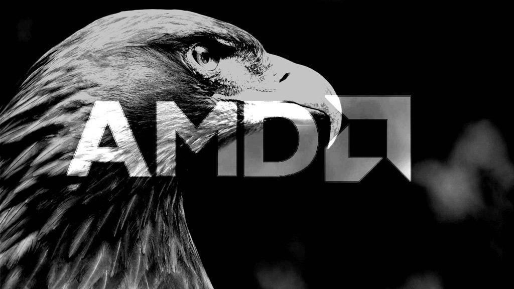 AMD Gray Hawk 1