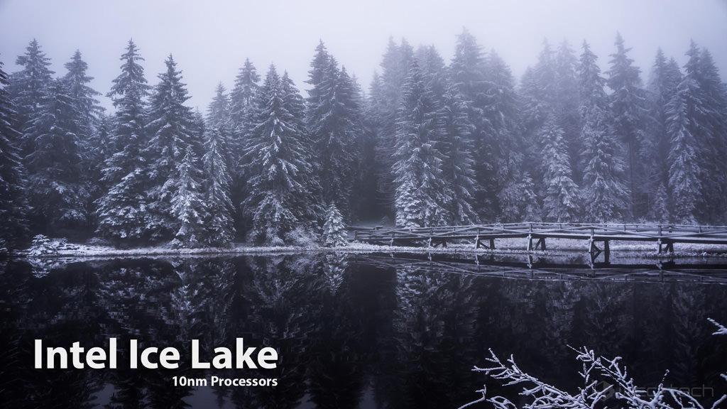 Intel Ice Lake 1