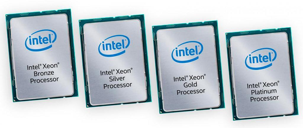 Intel Xeon Skylake SP 1