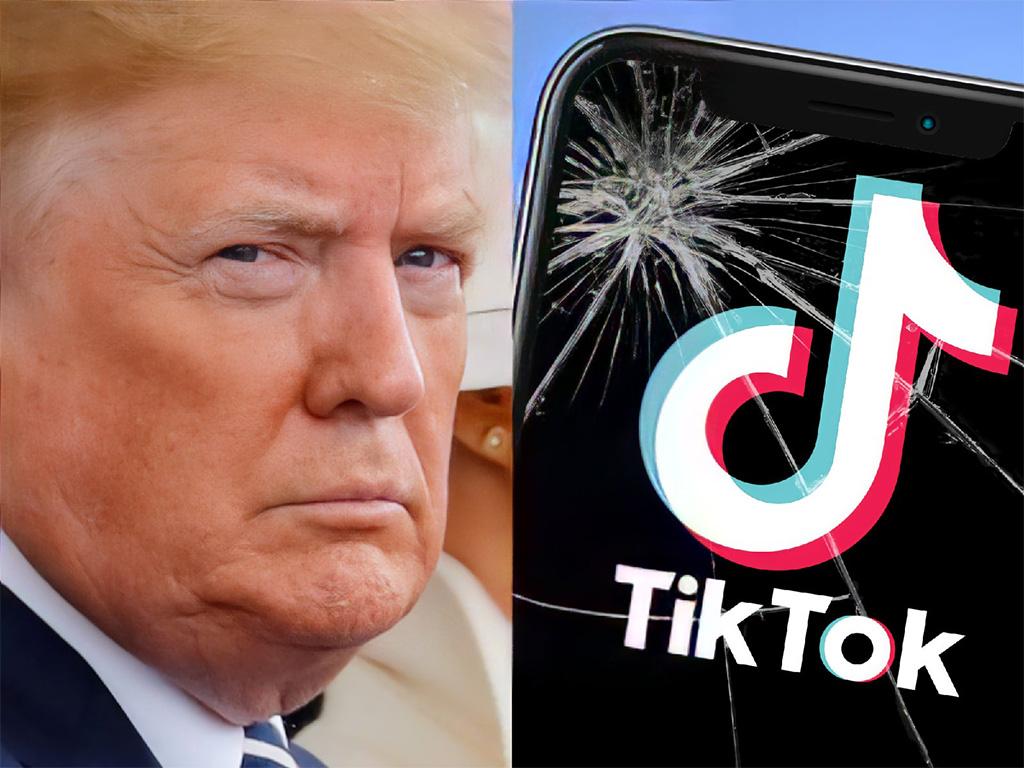 Битва за TikTok: Трампа не устраивает Oracle